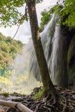 εθνικοί καταρράκτες plitvice πάρκων της Κροατίας εθνικό πάρκο krka της Κροατίας Στοκ φωτογραφίες με δικαίωμα ελεύθερης χρήσης