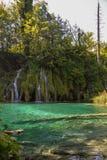 εθνικοί καταρράκτες plitvice πάρκων της Κροατίας Στοκ φωτογραφία με δικαίωμα ελεύθερης χρήσης