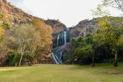 Εθνικός βοτανικός κήπος του Walter Sisulu στοκ φωτογραφία με δικαίωμα ελεύθερης χρήσης