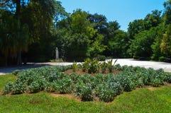 Εθνικός κήπος στην Αθήνα, Ελλάδα στις 23 Ιουνίου 2017 στοκ φωτογραφίες