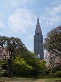 Εθνικός κήπος Gyoen Shinjuku - Τόκιο, Ιαπωνία στοκ εικόνα με δικαίωμα ελεύθερης χρήσης