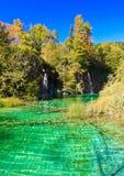 Εθνικός καταρράκτης πάρκων Plitvice και σαφής λίμνη νερού - Κροατία Στοκ Εικόνα