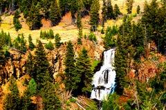 Εθνικός καταρράκτης πάρκων Yellowstone που περιβάλλεται από τις δασώδεις περιοχές και τους απότομους βράχους στοκ εικόνες