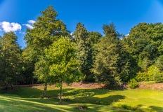 Εθνικός κόκος Ightham εμπιστοσύνης - μεσαιωνικό πάρκο ND σπιτιών Στοκ φωτογραφίες με δικαίωμα ελεύθερης χρήσης