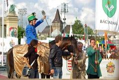 εθνικός νικητής καλπασμ&omicr Στοκ Εικόνες