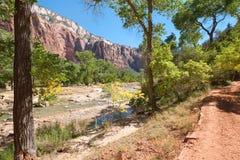 εθνικός ποταμός πάρκων zion στοκ εικόνα