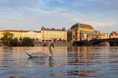Εθνικό θέατρο κατά τη διάρκεια της μερικής αναδημιουργίας Στοκ Φωτογραφίες