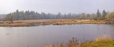 Εθνικό καταφύγιο άγριας πανίδας Όρεγκον Tualatin. στοκ εικόνα με δικαίωμα ελεύθερης χρήσης