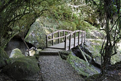 εθνικό μονοπάτι πάρκων itatiaia γεφυρών στοκ φωτογραφίες