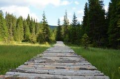 εθνικό μονοπάτι πάρκων yosemite Στοκ εικόνα με δικαίωμα ελεύθερης χρήσης