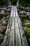εθνικό μονοπάτι πάρκων yosemite Στοκ Εικόνα
