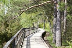 εθνικό μονοπάτι πάρκων yosemite Στοκ φωτογραφία με δικαίωμα ελεύθερης χρήσης