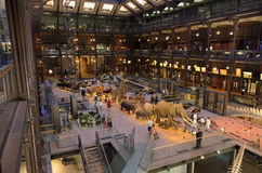 Εθνικό Μουσείο της φυσικής ιστορίας Στοκ Εικόνα