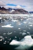 Εθνικό νερό κόλπων παγόβουνων πάρκων φιορδ Kenai παγετώνων της Αλάσκας Στοκ Εικόνες