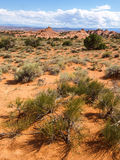 Εθνικό πάρκο αψίδων, Γιούτα, ΗΠΑ στοκ φωτογραφίες με δικαίωμα ελεύθερης χρήσης