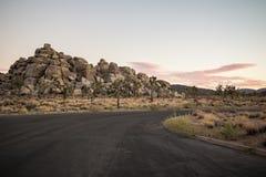 Εθνικό πάρκο δέντρων του Joshua, Καλιφόρνια στοκ εικόνες με δικαίωμα ελεύθερης χρήσης