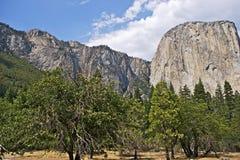 Εθνικό πάρκο ΗΠΑ Yosemite Στοκ Εικόνες