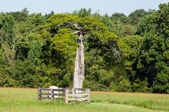 Εθνικό πάρκο δικαστηρίων κομητειών Appomattox Στοκ Εικόνες