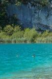 Εθνικό πάρκο λιμνών Plitvice, Κροατία στοκ φωτογραφίες