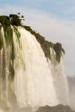Εθνικό πάρκο καταρρακτών Iguazu Στοκ Φωτογραφία