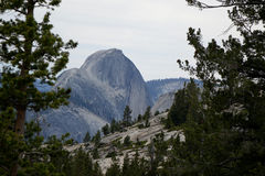 εθνικό πάρκο Καλιφόρνιας yos Στοκ εικόνα με δικαίωμα ελεύθερης χρήσης
