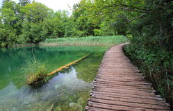 Εθνικό πάρκο Κροατία Plitvice Στοκ εικόνα με δικαίωμα ελεύθερης χρήσης
