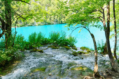 Εθνικό πάρκο λιμνών Plitvice, Κροατία Στοκ φωτογραφία με δικαίωμα ελεύθερης χρήσης