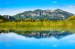 Εθνικό πάρκο λιμνών Skadar, Μαυροβούνιο Στοκ εικόνες με δικαίωμα ελεύθερης χρήσης