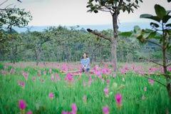 Εθνικό πάρκο λουλουδιών Krachai μια επαρχία Ταϊλάνδη Chaiyaphum στοκ φωτογραφίες