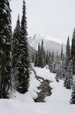εθνικό πάρκο παγετώνων το&upsi 33c ural χειμώνας θερμοκρασίας της Ρωσίας τοπίων Ιανουαρίου Στοκ εικόνα με δικαίωμα ελεύθερης χρήσης