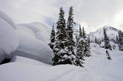 εθνικό πάρκο παγετώνων το&upsi 33c ural χειμώνας θερμοκρασίας της Ρωσίας τοπίων Ιανουαρίου Στοκ φωτογραφία με δικαίωμα ελεύθερης χρήσης