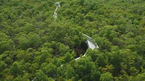 Εθνικό πάρκο στο Μαϊάμι στοκ εικόνα