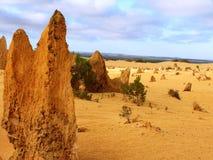 εθνικό πάρκο της Αυστραλί Στοκ Εικόνα