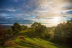 Εθνικό πάρκο της Ταϊλάνδης Στοκ φωτογραφία με δικαίωμα ελεύθερης χρήσης
