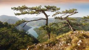Εθνικό πάρκο της Tara, Σερβία στοκ φωτογραφία με δικαίωμα ελεύθερης χρήσης