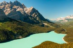 Εθνικό πάρκο του Καναδά λιμνών Peyto Στοκ εικόνα με δικαίωμα ελεύθερης χρήσης