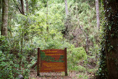 Εθνικό πάρκο του Vicente Perez Rosales, Χιλή στοκ φωτογραφία