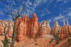 Εθνικό πάρκο φαραγγιών του Bryce, Γιούτα Στοκ Εικόνα