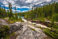 Εθνικό πάρκο Στοκ φωτογραφίες με δικαίωμα ελεύθερης χρήσης