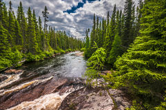 Εθνικό πάρκο Στοκ Φωτογραφίες