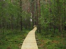 Εθνικό πάρκο Στοκ Εικόνες