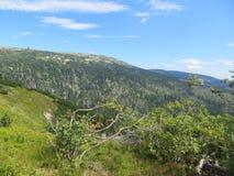 Εθνικό πάρκο Στοκ εικόνες με δικαίωμα ελεύθερης χρήσης