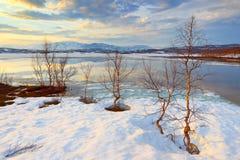 Εθνικό πάρκο Abisko Στοκ Φωτογραφίες