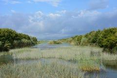 Εθνικό πάρκο Albufera Στοκ Φωτογραφίες
