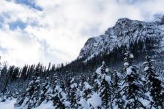 Εθνικό πάρκο Banff χειμερινών τοπίων Στοκ εικόνα με δικαίωμα ελεύθερης χρήσης
