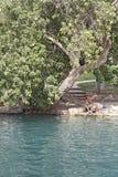 Εθνικό πάρκο Beit She'an Στοκ φωτογραφίες με δικαίωμα ελεύθερης χρήσης