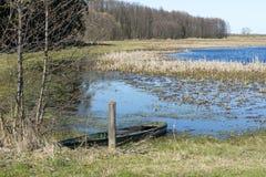 Εθνικό πάρκο Biebrza Στοκ εικόνα με δικαίωμα ελεύθερης χρήσης