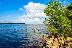 Εθνικό πάρκο Biscayne Στοκ εικόνες με δικαίωμα ελεύθερης χρήσης