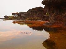 Εθνικό πάρκο Canaima Βενεζουέλα Στοκ Εικόνες