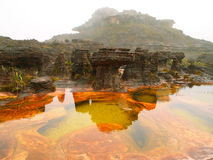 Εθνικό πάρκο Canaima Βενεζουέλα Στοκ εικόνα με δικαίωμα ελεύθερης χρήσης